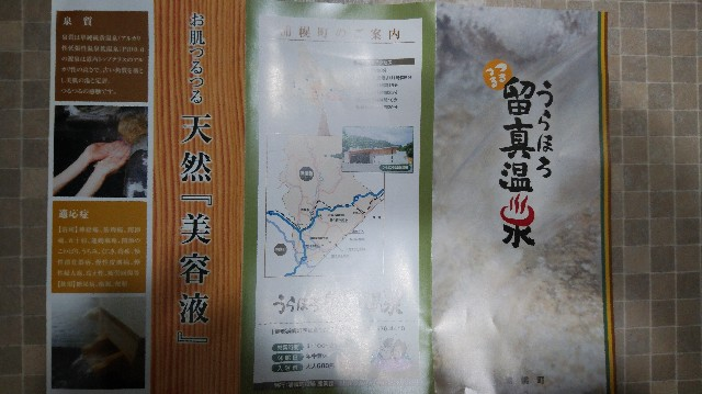 f:id:wanpaku-yaseiji:20190711002516j:image