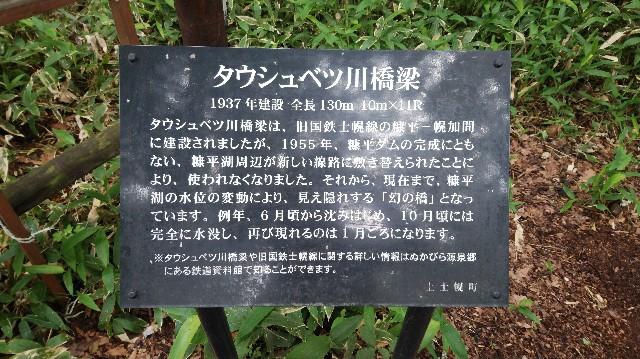 f:id:wanpaku-yaseiji:20190711010038j:image