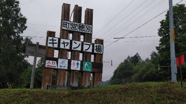 f:id:wanpaku-yaseiji:20190729122650j:image
