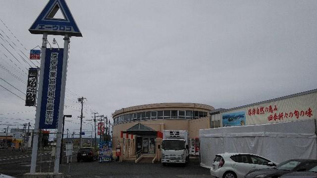 f:id:wanpaku-yaseiji:20190914141231j:image