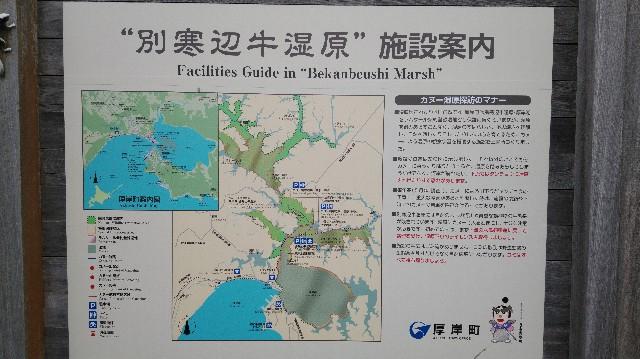 f:id:wanpaku-yaseiji:20190918234645j:image