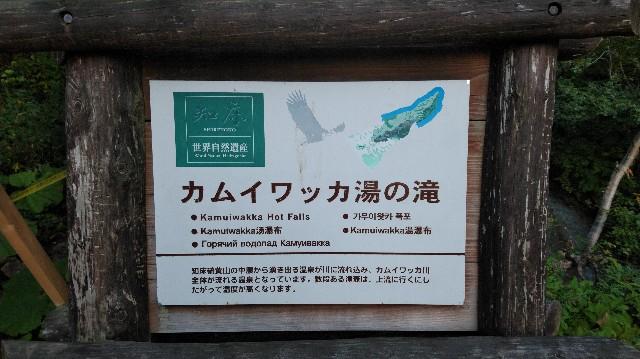 f:id:wanpaku-yaseiji:20190929235250j:image