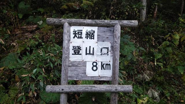 f:id:wanpaku-yaseiji:20191006180113j:image