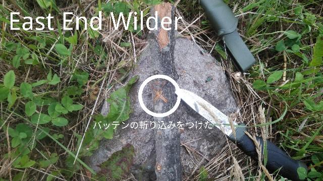 f:id:wanpaku-yaseiji:20191112005953j:image