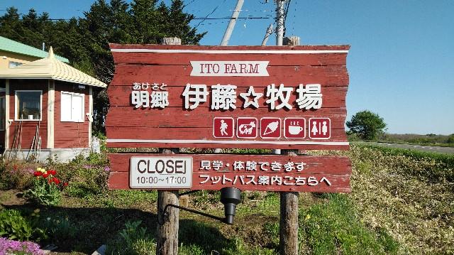 f:id:wanpaku-yaseiji:20200603011811j:image