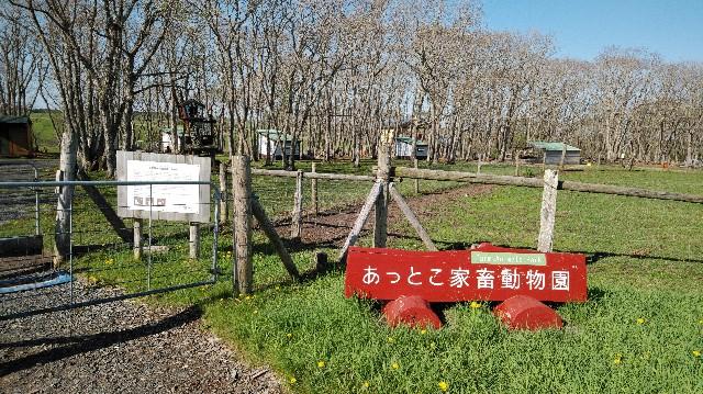 f:id:wanpaku-yaseiji:20200603021127j:image