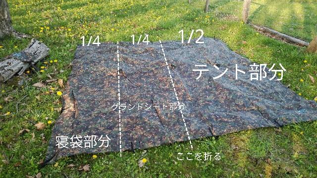 f:id:wanpaku-yaseiji:20200618124152j:image