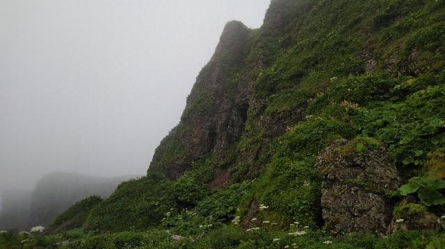 f:id:wanpaku-yaseiji:20200715174758j:image