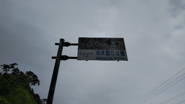 f:id:wanpaku-yaseiji:20200821124410j:image