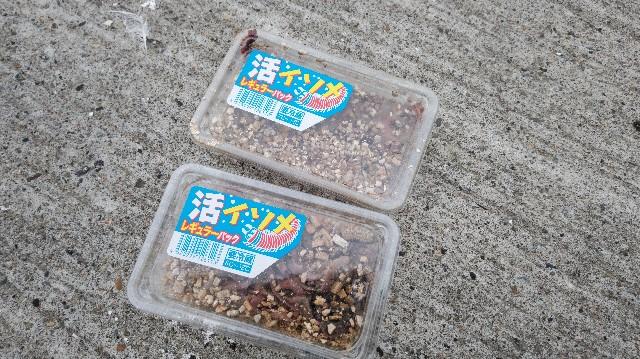 f:id:wanpaku-yaseiji:20200825122058j:image