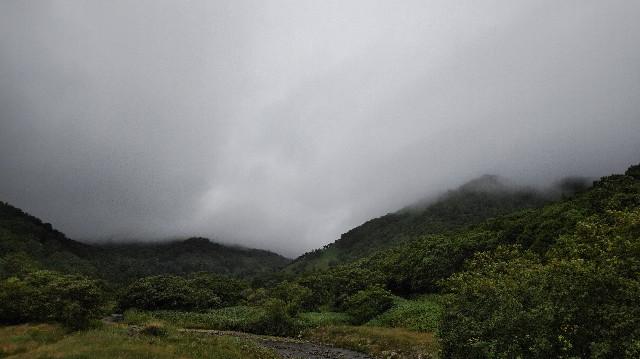f:id:wanpaku-yaseiji:20200826025624j:image