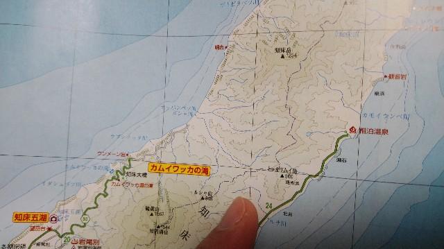 f:id:wanpaku-yaseiji:20200916013702j:image