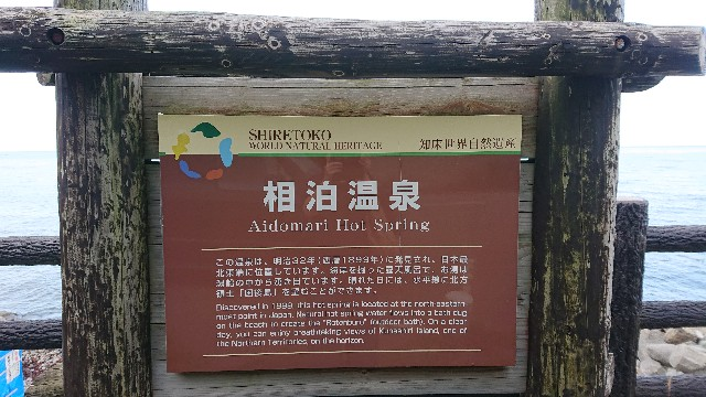 f:id:wanpaku-yaseiji:20201001204715j:image