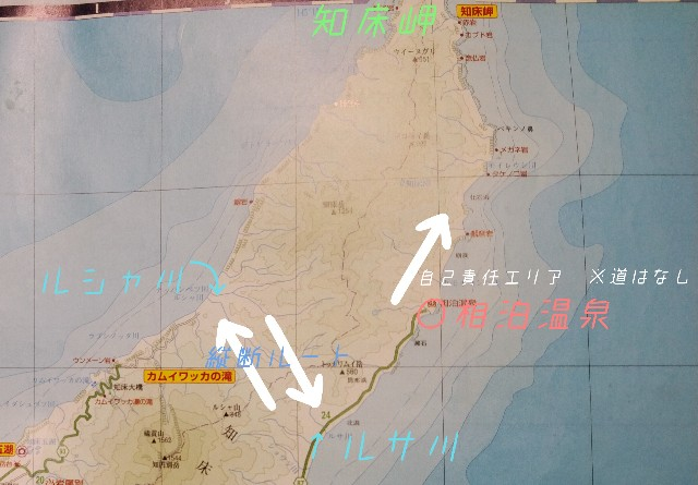 f:id:wanpaku-yaseiji:20201003224019j:image
