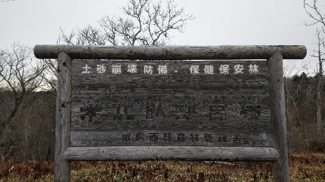 f:id:wanpaku-yaseiji:20201202123850j:image