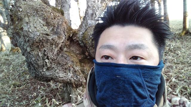 f:id:wanpaku-yaseiji:20210103005126j:image