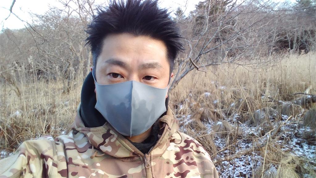 f:id:wanpaku-yaseiji:20210125203110j:image