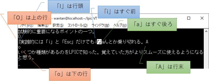 f:id:wantanBlog:20200814225115p:plain