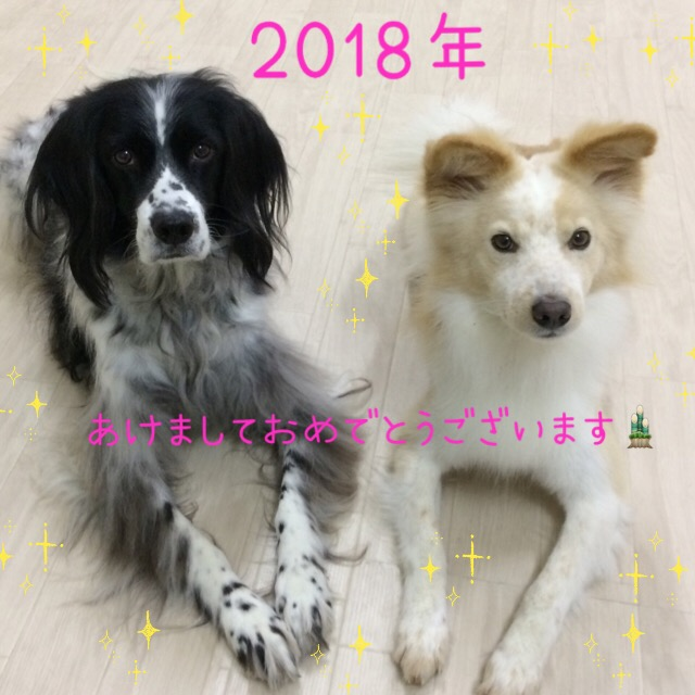 f:id:wantosiawase:20180102180345j:plain