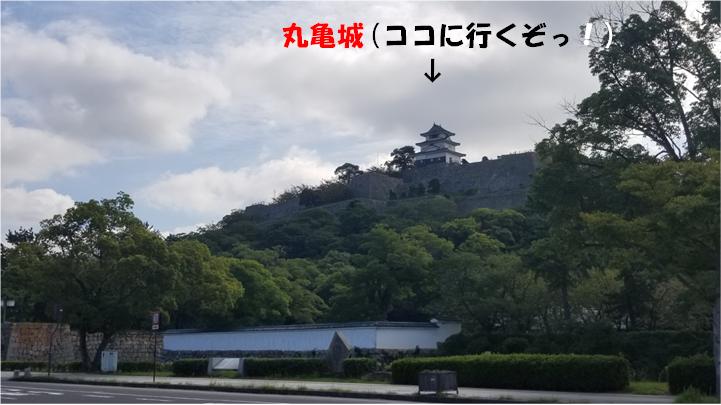 f:id:wanwankazoku:20190929202617p:plain