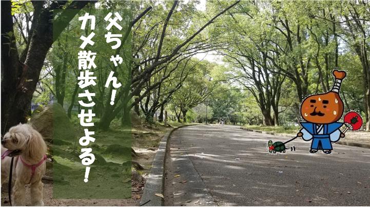 f:id:wanwankazoku:20190929210038p:plain