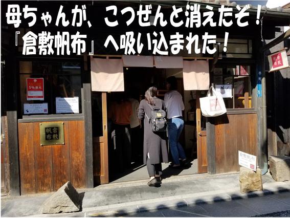 f:id:wanwankazoku:20191009001949p:plain