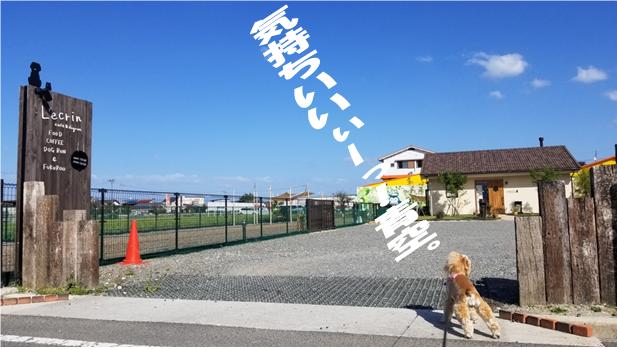 f:id:wanwankazoku:20191013222454p:plain