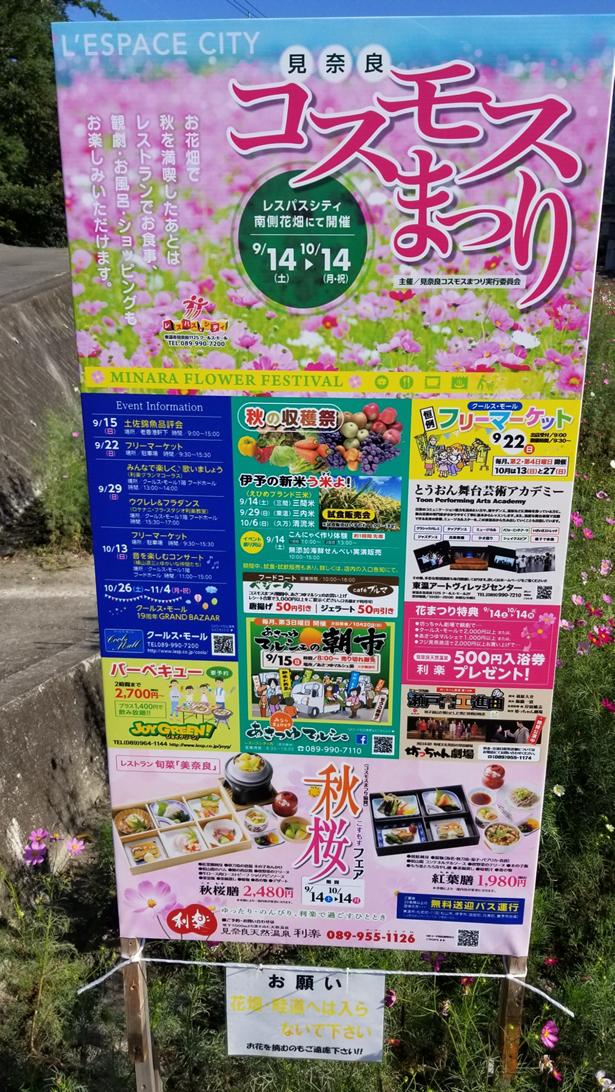 f:id:wanwankazoku:20191016001604p:plain