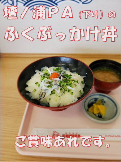 f:id:wanwankazoku:20191030002310p:plain