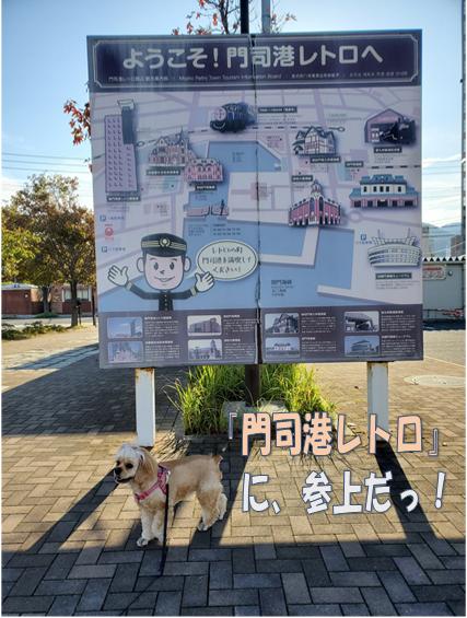 f:id:wanwankazoku:20191113000509p:plain