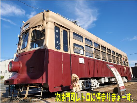 f:id:wanwankazoku:20191113000731p:plain