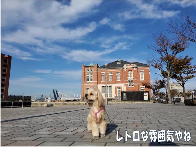 f:id:wanwankazoku:20191113001903p:plain