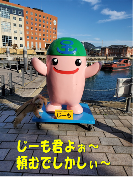 f:id:wanwankazoku:20191113003907p:plain