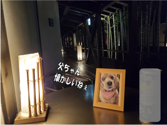 f:id:wanwankazoku:20191117124953p:plain
