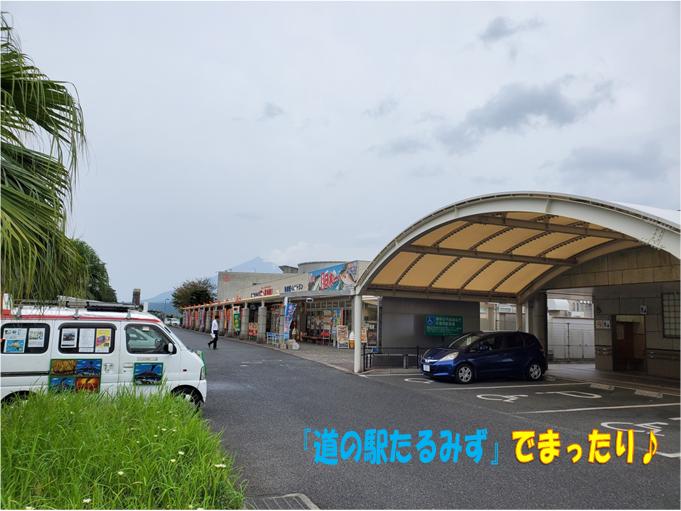 f:id:wanwankazoku:20191117212005p:plain