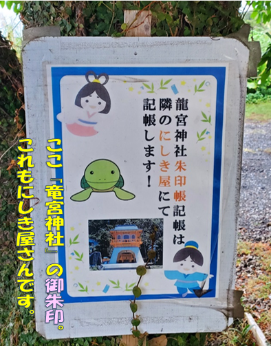 f:id:wanwankazoku:20191119001658p:plain