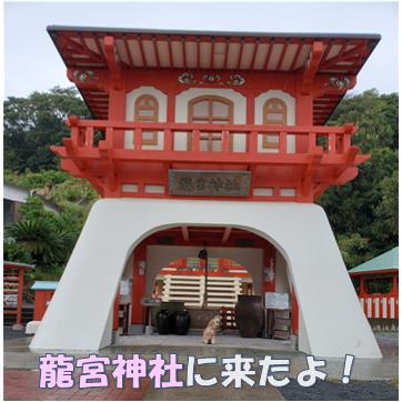 f:id:wanwankazoku:20191119003842p:plain