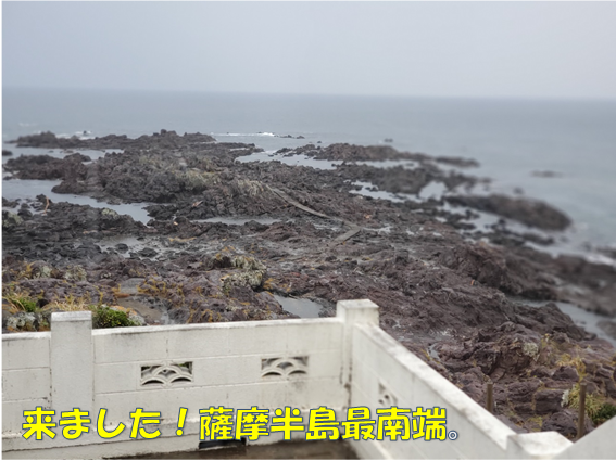 f:id:wanwankazoku:20191119233214p:plain