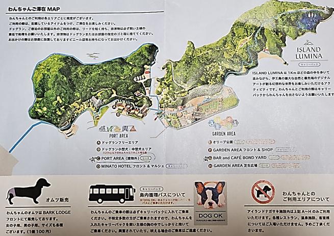f:id:wanwankazoku:20191201214654p:plain
