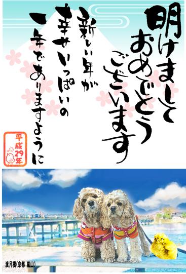 f:id:wanwankazoku:20191219234904p:plain