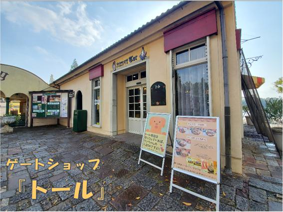 f:id:wanwankazoku:20191221231941p:plain