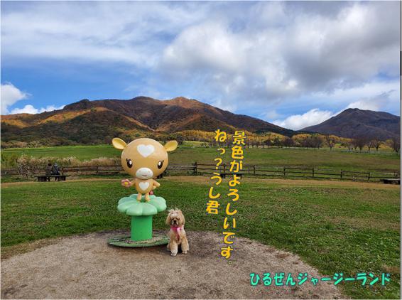 f:id:wanwankazoku:20191222233052p:plain