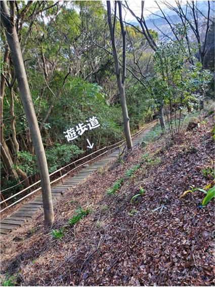 f:id:wanwankazoku:20200105220159p:plain