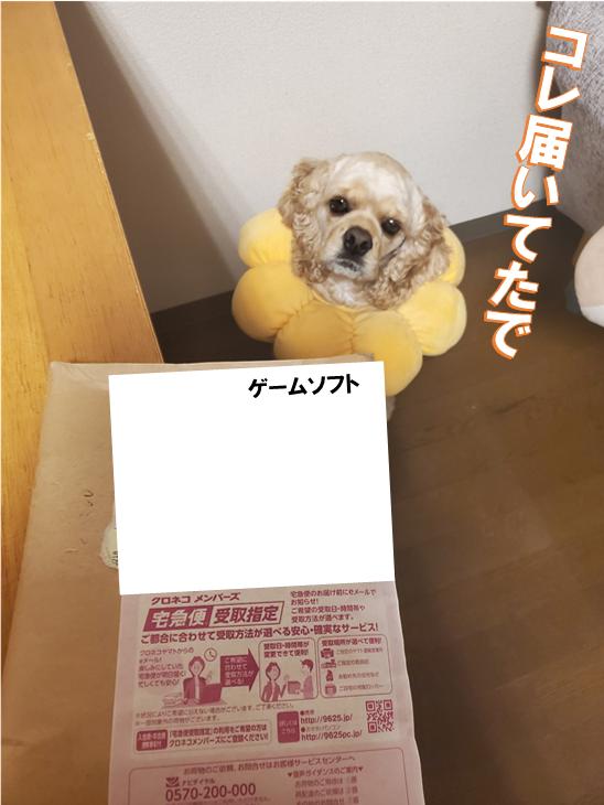 f:id:wanwankazoku:20200219201502p:plain
