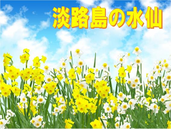 f:id:wanwankazoku:20200223231757p:plain