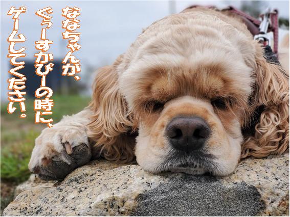 f:id:wanwankazoku:20200404211109p:plain