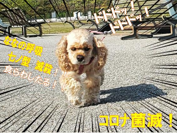 f:id:wanwankazoku:20200419094823p:plain