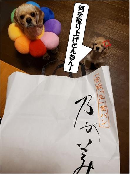f:id:wanwankazoku:20200613183910p:plain