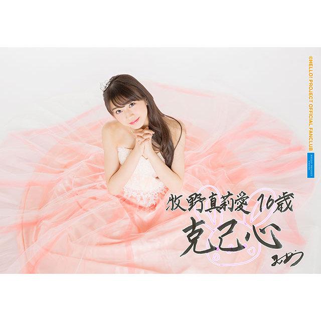 f:id:warabimochi624:20170702035004j:plain