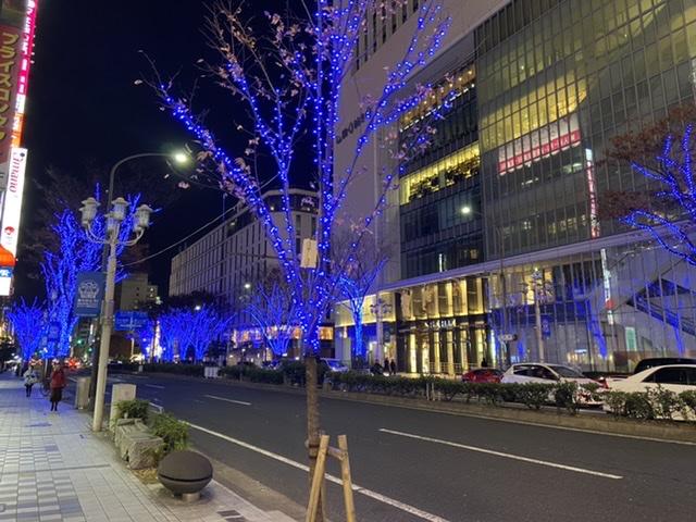f:id:warabitowasabi:20201213184321j:plain